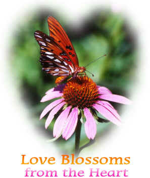 Love Blossoms From the Heart